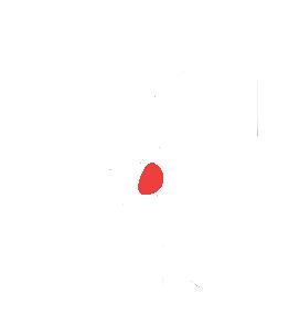 Digiwits logo